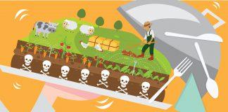 เกษตรอินทรีย์ จริงแท้ยังจำกัดอยู่แค่ปลายลิ้น! - www.Salika.co