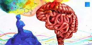 ความคิด Serotonin
