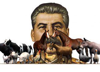Animal Farm สตาลิน
