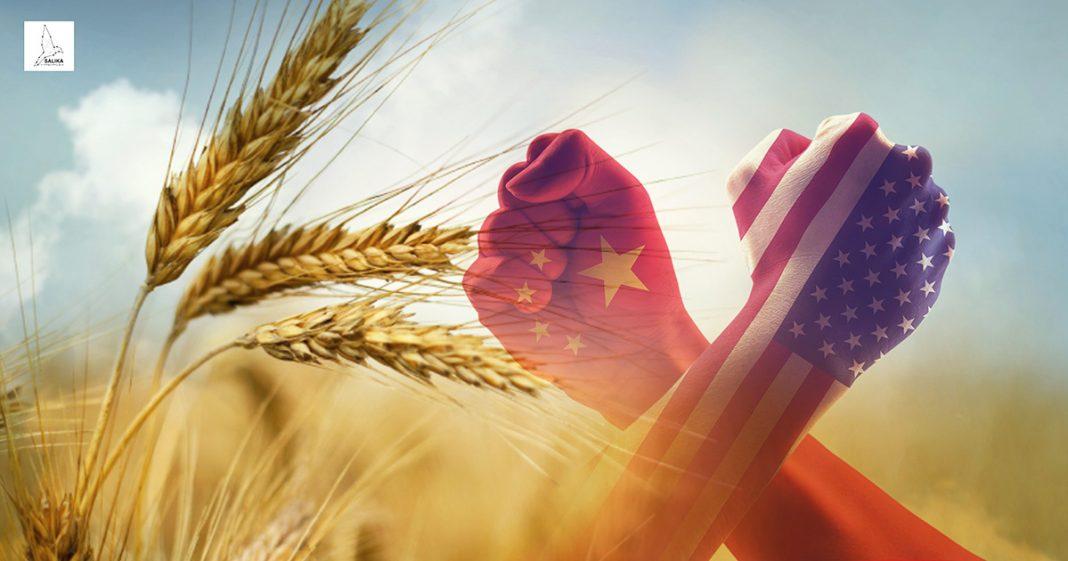การเกษตร จีน