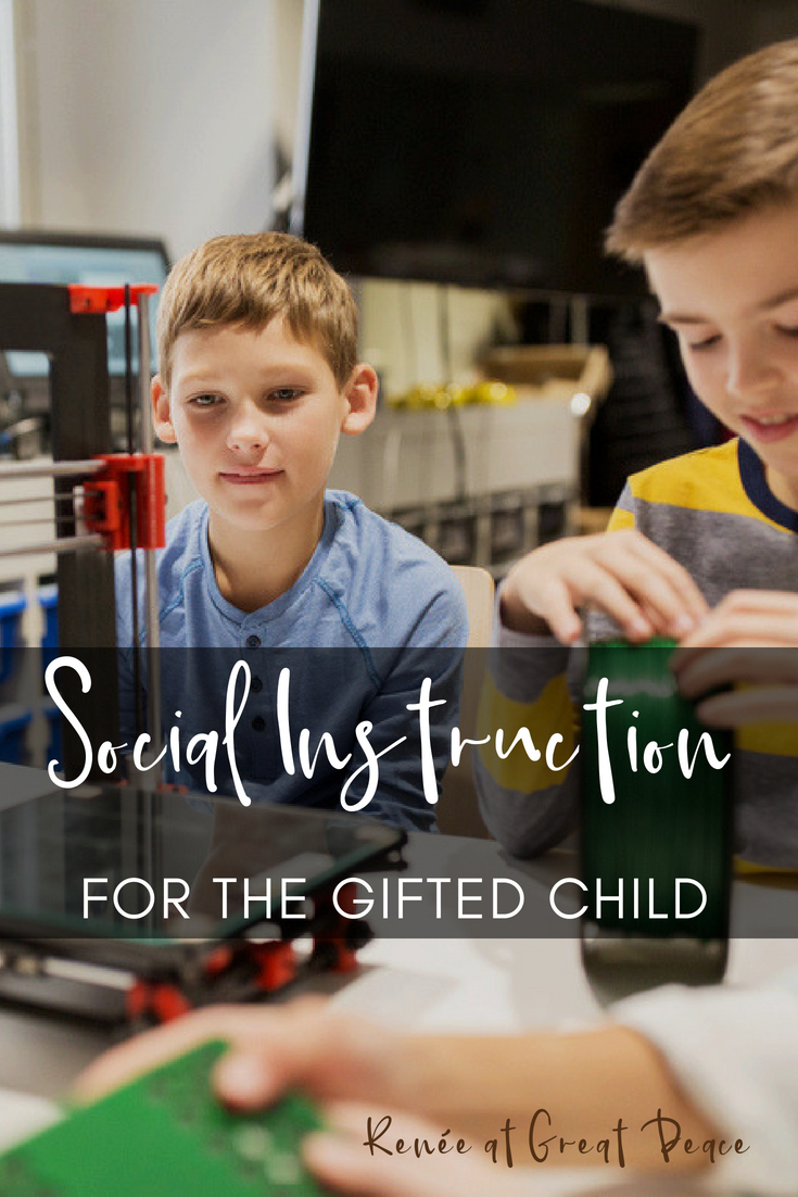 Social-Instruction-for-the-Gifted-Child เด็กปัญญาเลิศ Gifted child