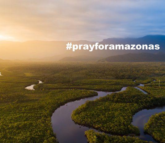 ผืนป่าแอเมซอน