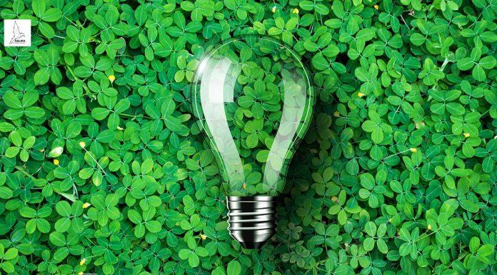 องค์กร Greenovation