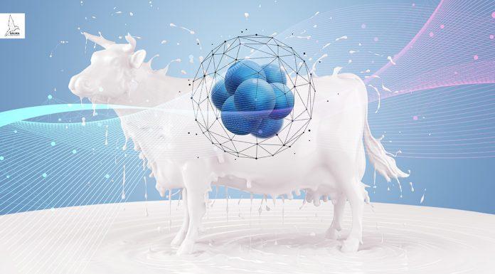milk-nanotechnology นม นาโนเทคโนโลยี