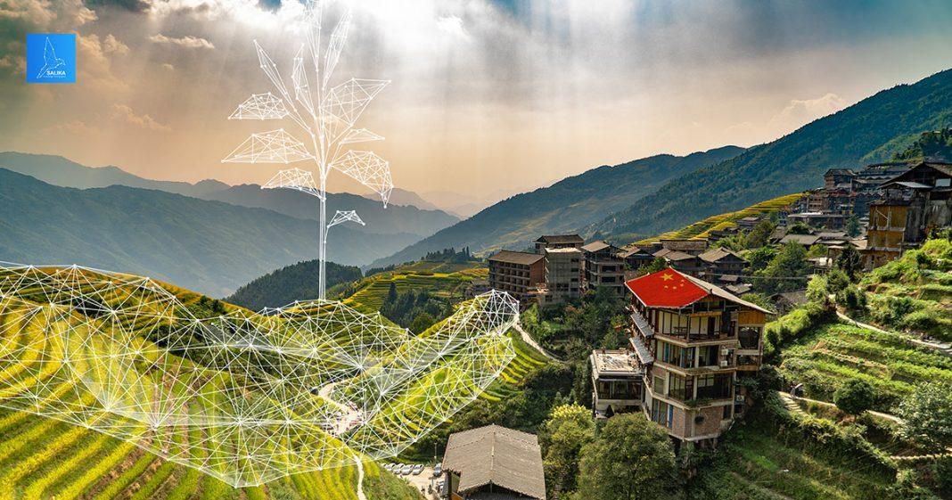 การพัฒนาทางการเกษตรของจีน
