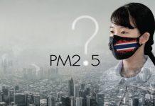 มาตรการแก้ปัญหา ฝุ่น PM2.5